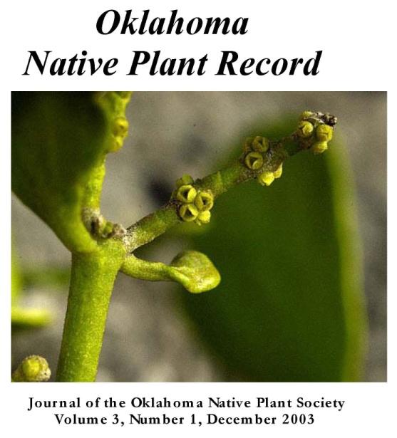 Cover: Phoradendron serotinum, Mistletoe in flower, by Charles Lewallen.