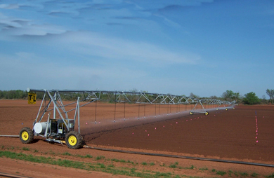 LCB Irrigation Area