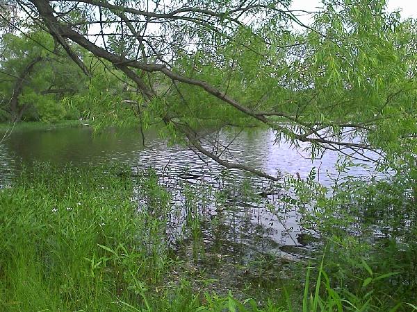 Image of Lake Sanborne